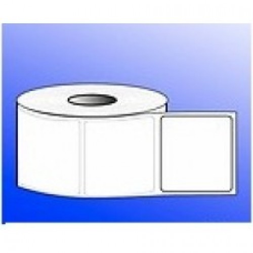 50mmX50mm Blank Polyester Label - 2UP